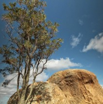 Camera Club Outing to Melville Caves, Rheola & Inglewood