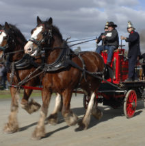 Trip to the Echuca Steam Rally