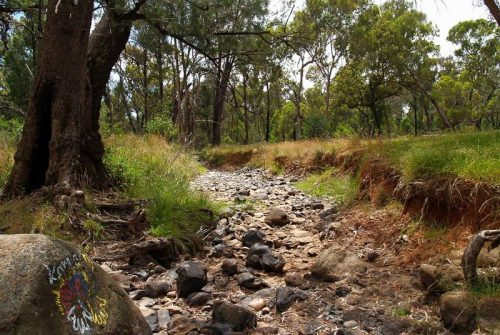 'Dry Creek Bed' by Jenny Peters