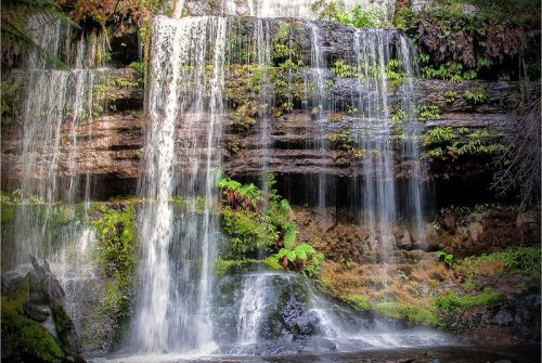 'Mt Field NP Water Fall' by Allan Davis