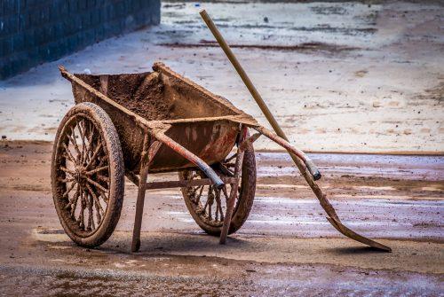 'Muddy' by Mal Brayshaw