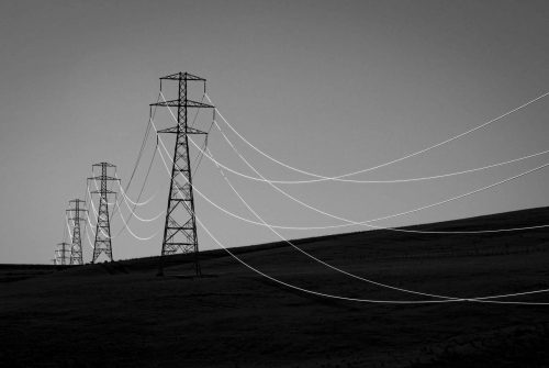 'Light on the wire' By Will Tainsh – Monthly Winning Entry