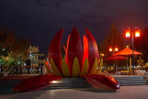 'Lotus At Night' by Mal Brayshaw