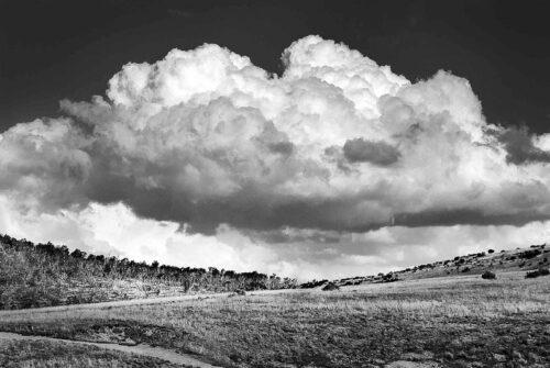 'Cumulus' by George Greblo