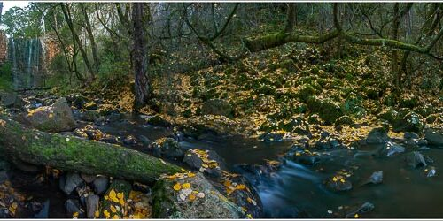 'Trentham Falls Panorama' by Norm Stimson.  Winning entry open digital