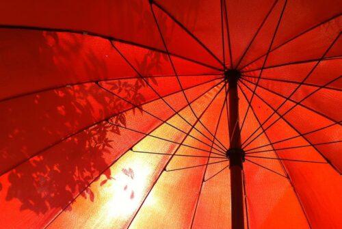 'It Was A Beautiful Day' by Cheryl Munzel